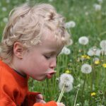 Wishing on dandelions? Good for the placebo effect. Is RES any different?